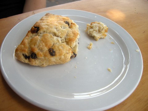 Gluten-Free Currant Scone
